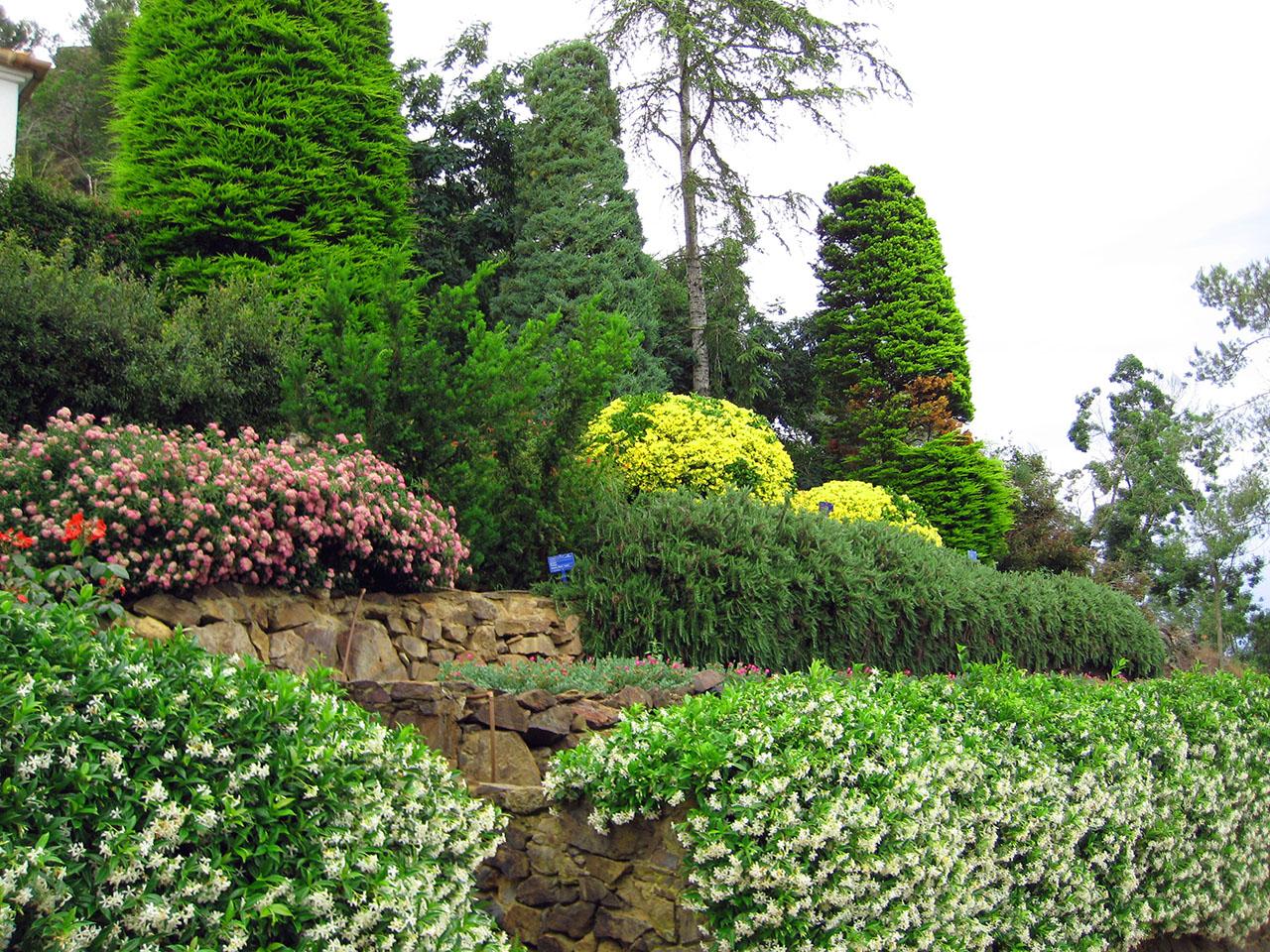 Giardini Terrazzati. Cool Il Giardino Delluisola Bella With Giardini ...